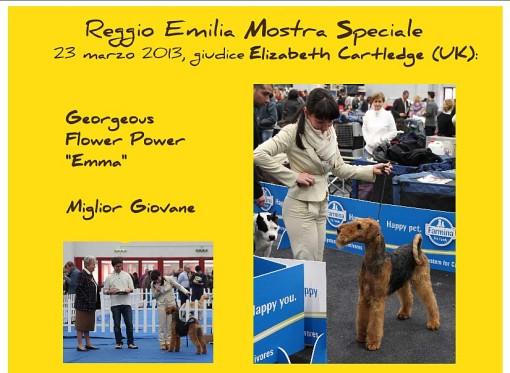 Reggio Emilia 2013 6